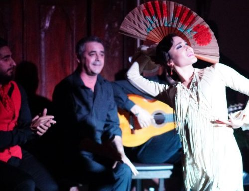 Spain Savvy Partners: The Essence of Flamenco in Triana at Baraka