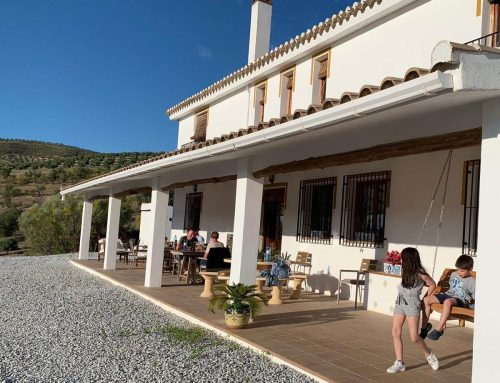 The Lemon Tree Retreat: A Family-Friendly Hotel in Spain's Deep Country