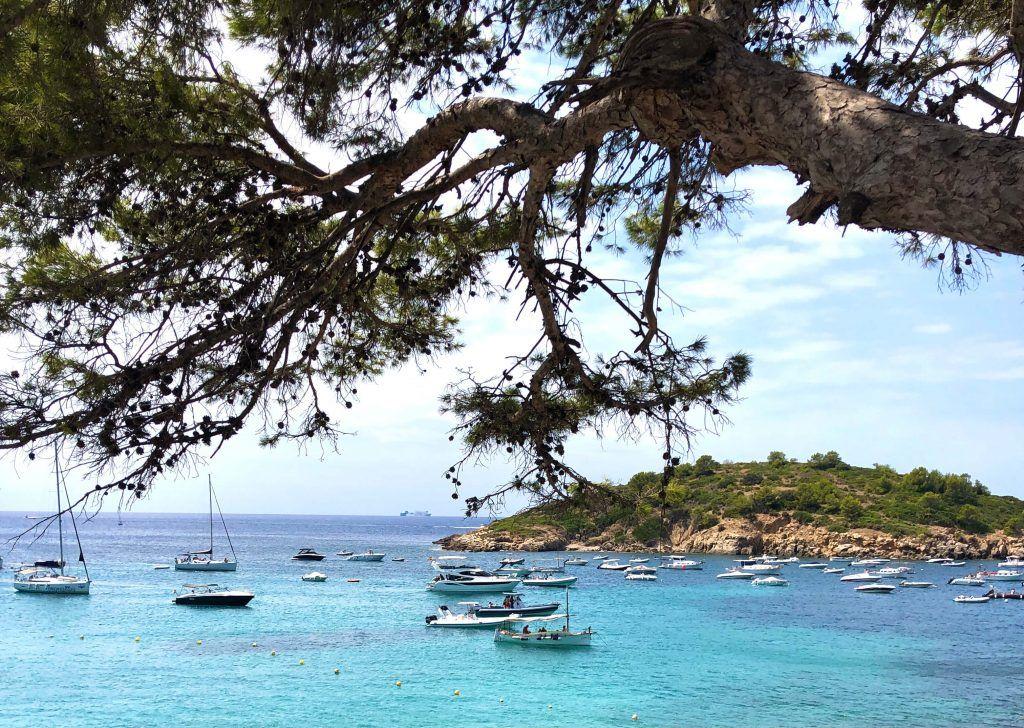 sail boats in Mallorca cove